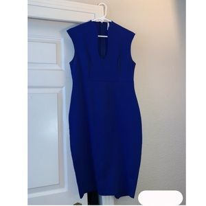 Blue Woman's Dress